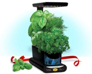 The AeroGarden Sprout Plus comes with a Gourmet Herbs Seed Kit