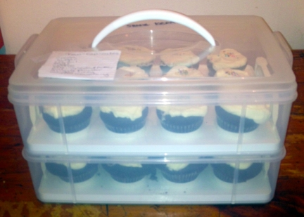 cupcakes in the briefcase